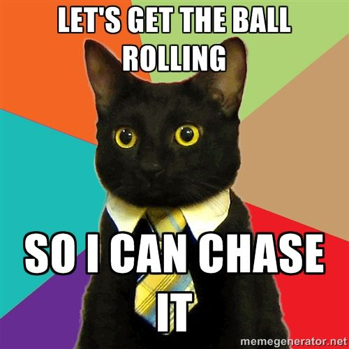 Let's get the ball rolling so I can chase it - Business Cat | Meme ...
