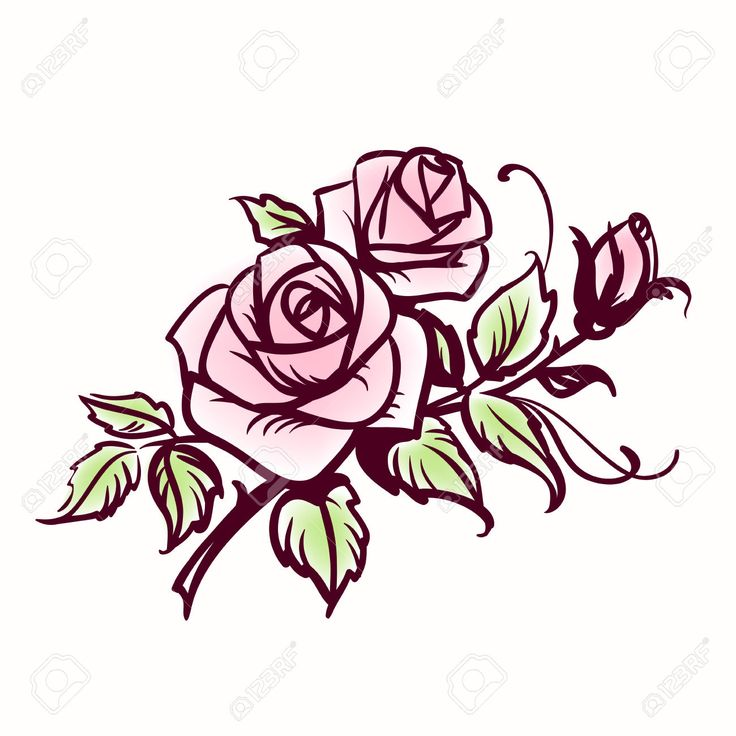 Roses Royalty Free Cliparts, Vectors, And Stock Illustration. Image 23660150.