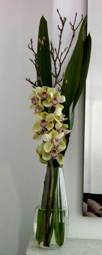 Cymbidium Orchid centerpiece