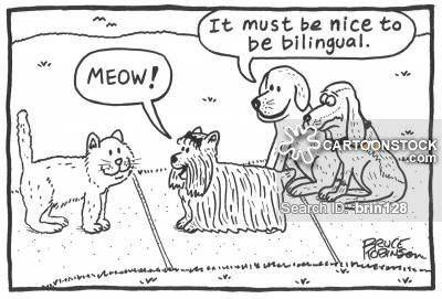 (2016-11) Fordelene ved at være flersproget