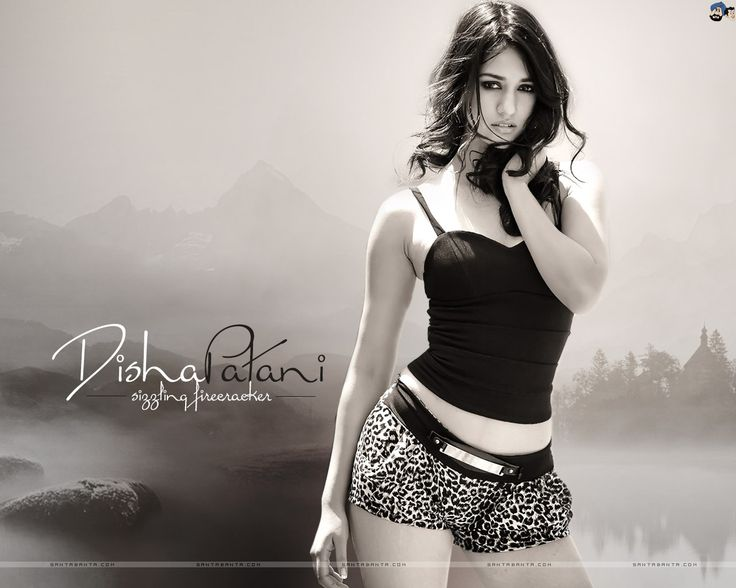 36 Best Images About Disha Patani On Pinterest