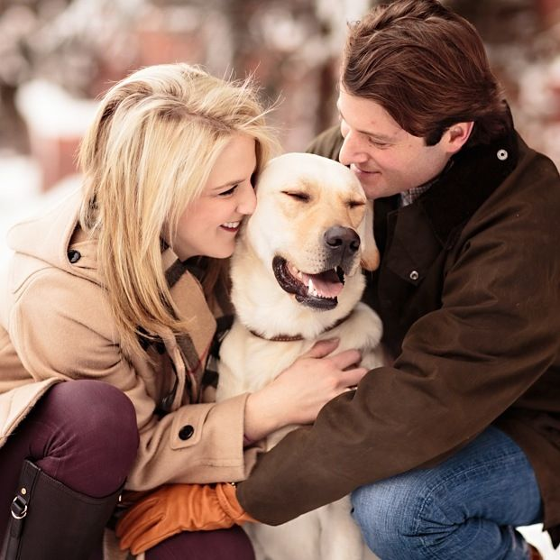 Engagement Photos in Aspen | Jason+Gina Wedding Photographers. Happiest dog ever,!!!!