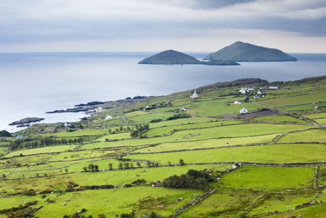 Many Irish genealogy databases offer valuable data for researching Irish ancestry in the form of extractions, transcriptions and digitized images. Try these Irish genealogy Web sites first when researching your Irish family tree.