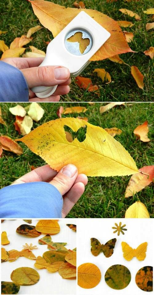 cool way to use martha stewart paper cutters - leaf embellishments are perfect for a fall themed scrapbook!