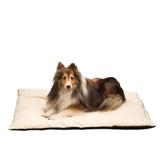 heated dog bed good idea during the winter w hardwood floors - Heated Dog Bed