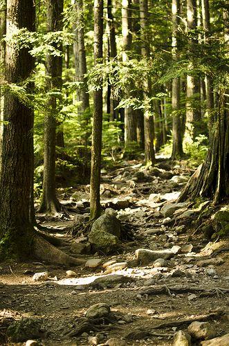 lynn loop path, North Vancouver, Canada
