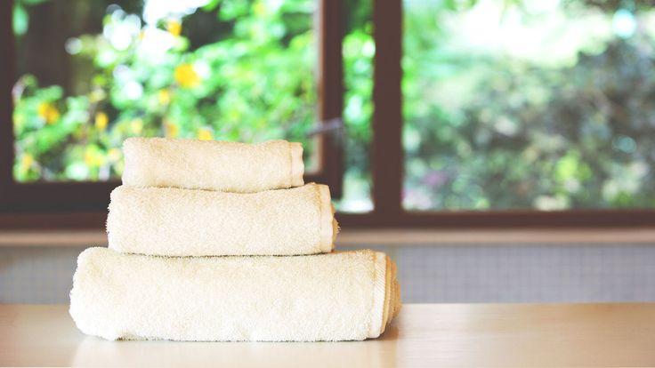 """その素材はまるで、タオルになるために生まれてきたかのよう。そう言っても過言ではないほど、""""両者""""の特徴は、人の体を拭くのに適しているのです。このブランド「SASAWASHI」には、Tシャツやソックス、スリッパなど、あらゆるアイテムが揃いますが…両者とは、「和紙」と「くま笹」。これらから生まれた高機能繊維が「SASAWASHI」。快適な機能は天然由来のものなので、安心して肌を委ねられます。綿や..."""