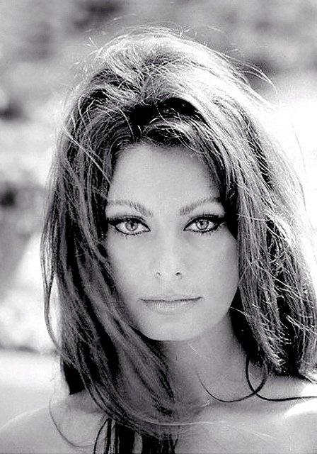 Sophia Loren:  born Sofia Villani Scicolone   (September 20, 1934) is an Italian actress. #SophiaLoren