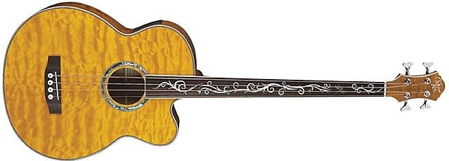Dragonfly 4 Fretless by Michael Kelly