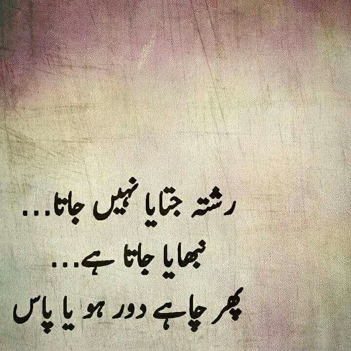 711 Best Urdu Corner Images On Pinterest