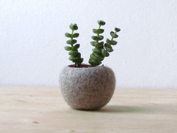 Beige Felt cactus planter / felted bowl / Succulent pod / light camel / minimalist home decor /air plant vase