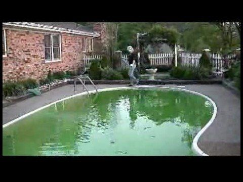 28 Best Images About Pool On Pinterest Green Algae Pump And Pools