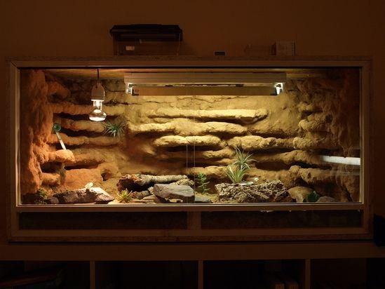 Leopardgecko-Terra - Bilder eurer Terrarien!