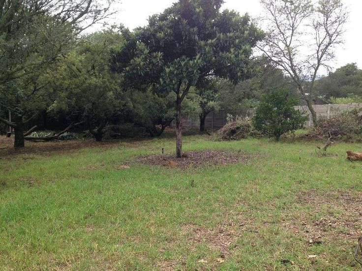 Calling all Investors & Developers - 1357 sqm. Serious buyers only. Vacant Land - in Lyttelton Manor Centurion, including pan handle. Subdivision has been approved by City of Tshwane, but not registered as yet. This will be done simultaneously with sale & transfer of property. Rezoning for this property has been approved - Res.2.