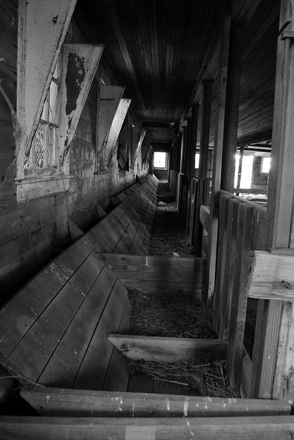 17 Best Images About Inside Old Barn Photos On Pinterest