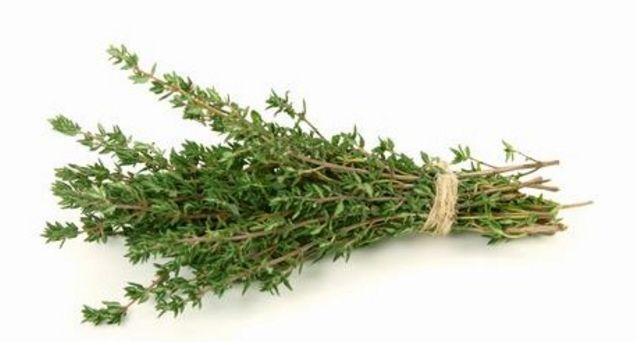 Cea mai puternică plantă care distruge STREPTOCOCUL, HERPESUL, CANDIDA şi VIRUSURILE GRIPALE - Sanatos Zi de Zi