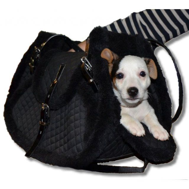 custom crafted dog transport shoulder bag