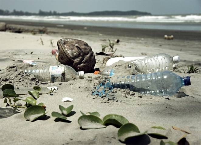 Plastic pollution on the beach, follow link to learn more about why biodegradable plastics aren't the answer.