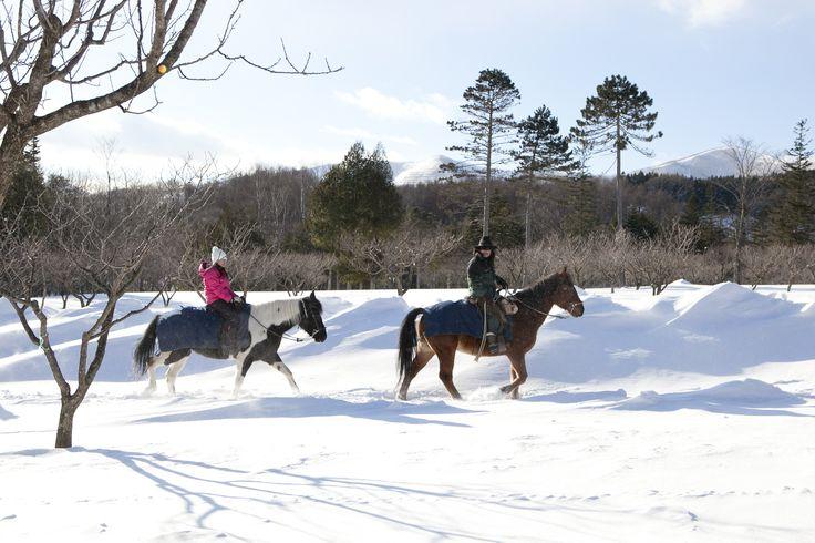 Club Med Hokkaido  Horse Trecking   クラブメッド北海道 ホーストレッキング