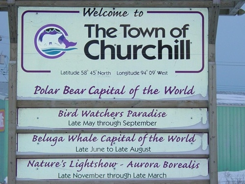 I want to go to Churchill and kayak with beluga whales right underneath me