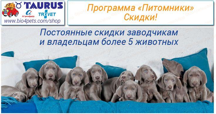 """Программа """"Питомники"""" Уважаемые владельцы питомников собак и кошек, а также владельцы более 5 собак и/или кошек!  Зарегистрировавшись в программе «Питомники» вы сможете приобретать со скидкой японскую продукцию Таурус, бельгийские корма Евро-Премиум, Катц меню, голландские диетические корма Тровет, а также японский комкующийся березово-соевый наполнитель для кошачьих туалетов Окара Кэт Литтер.  Скидка предоставляется заводчику и распространяется на всех владельцев собак/кошек носящих…"""