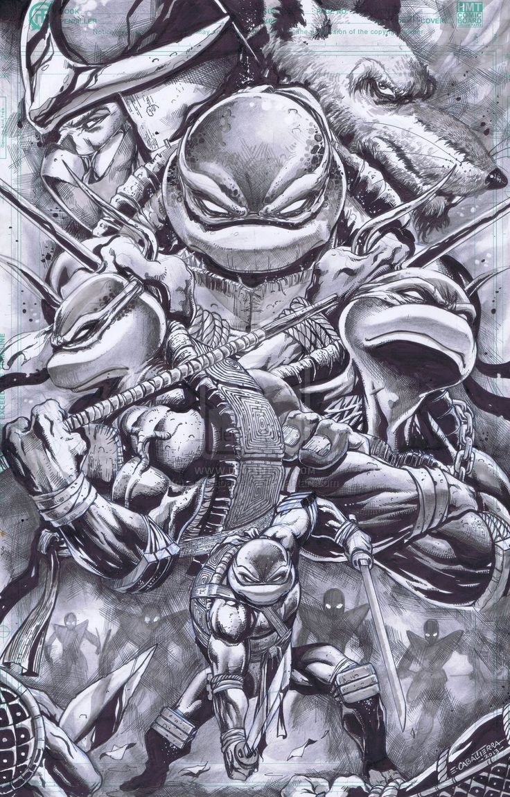 Teenage Mutant Ninja Turtles. Awesome drawing here. TMNT was one of my favorite shows growing up and the 80's movies were awesome.