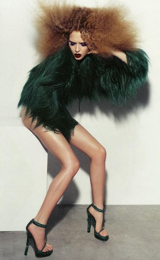 fur coat with a hair style to match wild high fashion
