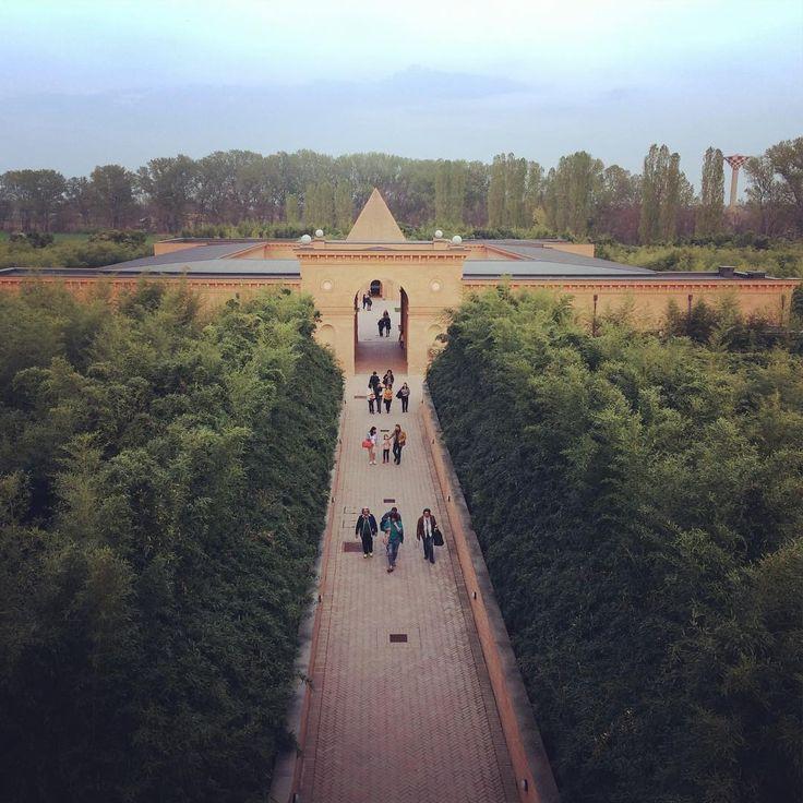 "architetto (@locuspocus_studio) on Instagram: ""Nel cuore del labirinto verde #garden #giardino #labirinto #jardin #krajobraz #bamboo…"""