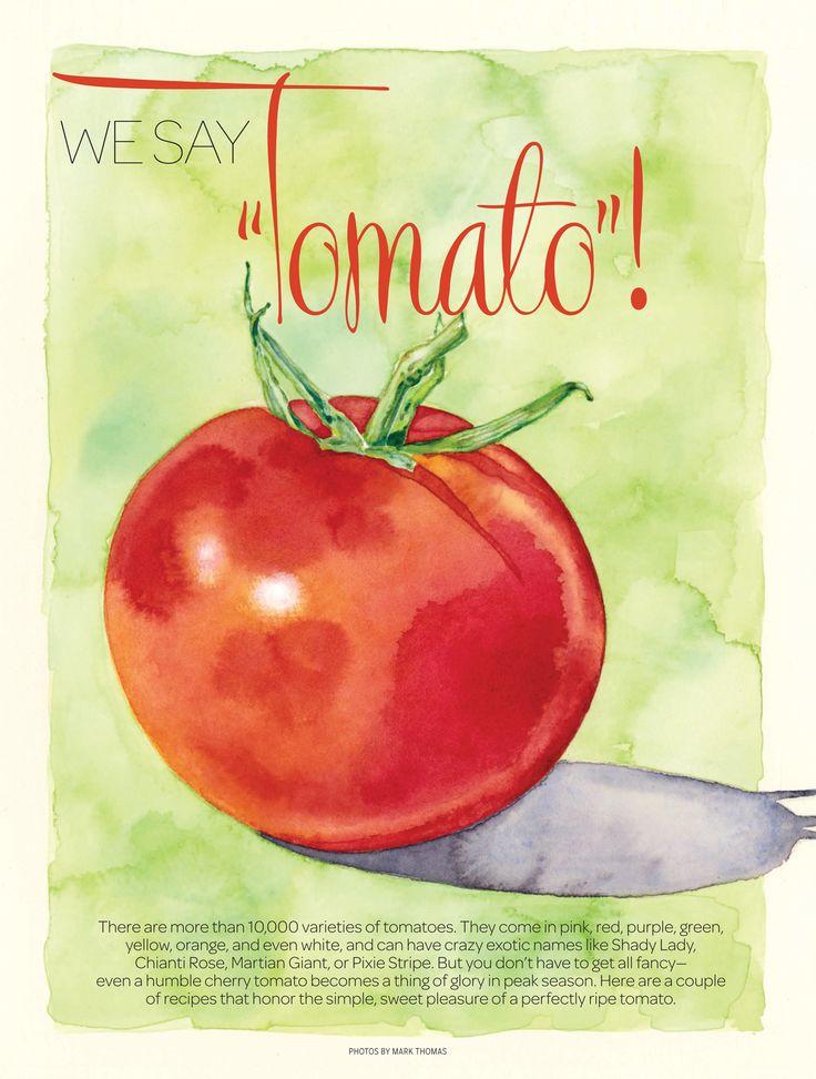 "ⓒDenise Hilton Campbell Illustration for   All Recipes Magazine ""Tomatoes!"".   tomatoes, watercolor, red, food, www.salzmanart.com representative"