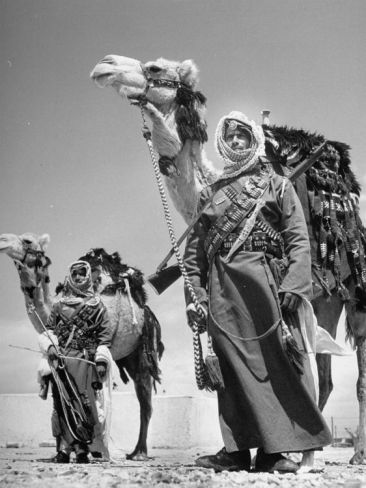 Arab soldiers standing guard with their camels, 31 March 1948 by John Philips/Time Life Photos