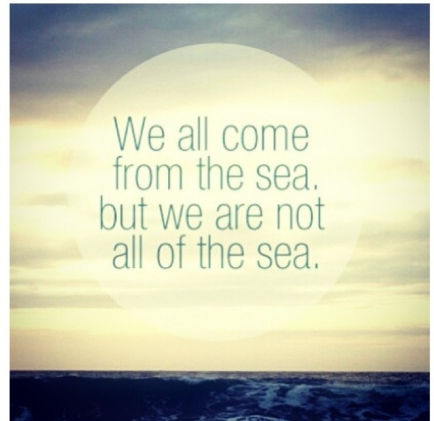 Chasing mavericks :) this is my quote and all of the others that are of the seas quote live like jay! Rip