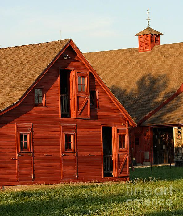 Dual Barns - 3811