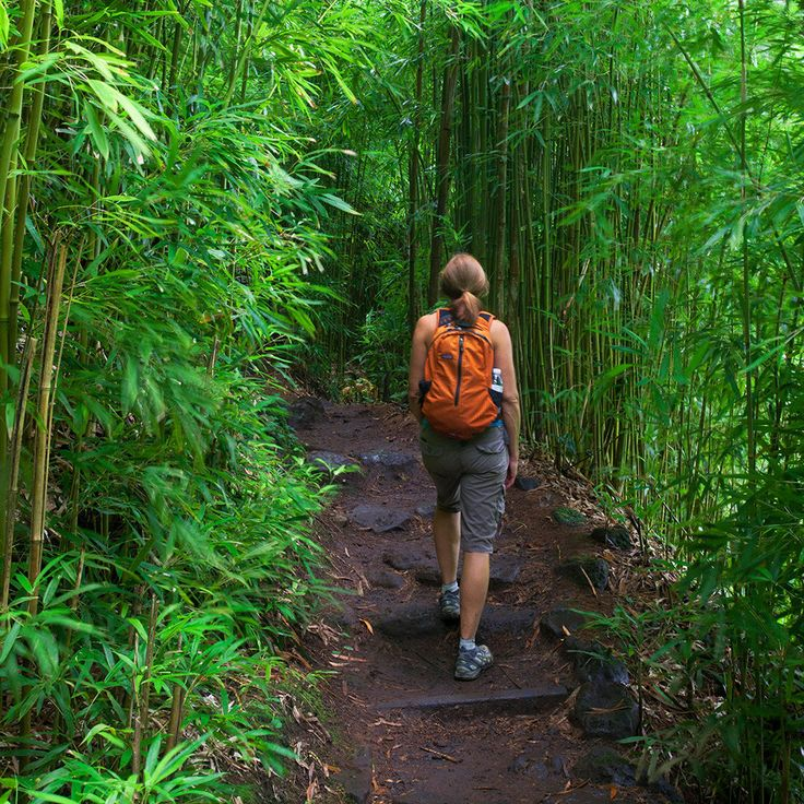 T+L Best Hkes: Maui is known as a watersports playground and for good reason. Swim beneath waterfalls as they splash through the jungle in verdant, time-sculpted canyons, or trek past isolated, little-known beaches that are only accessible by trail. Even with all of the adventures, however, hiking on Maui can be a sensitive issue, since many of the island's hidden hikes tend to pass over priv...