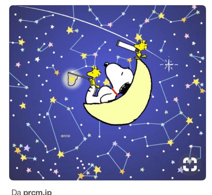 So many stars!☄
