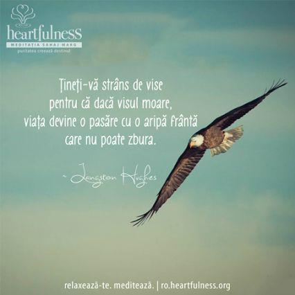 Țineți-vă strâns de vise pentru că dacă visul moare, viața devine o pasăre cu o aripă frântă care nu poate zbura. ~ Langston Hughes #heartfulness   #hfnro   #cunoaste_cu_inima Heartfulness Romania - Google+