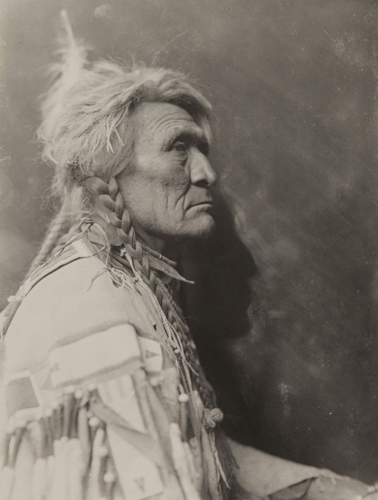 Native american in profile by richard throssel native