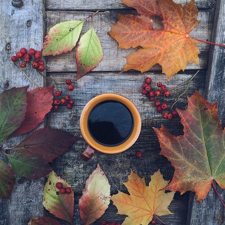 "snowy-autumnal-kisses: ""  enjoying the  """