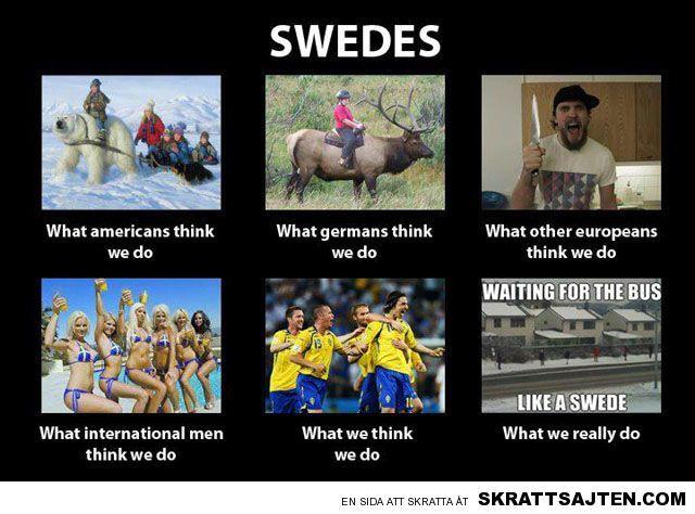 Ruotsi Meemi