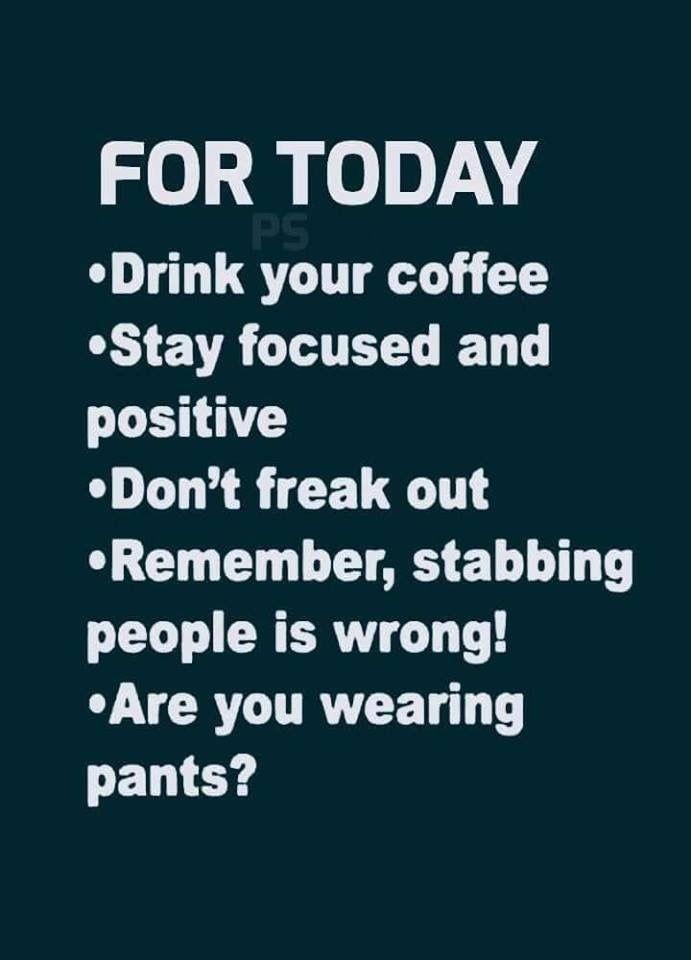 Sarcastic Morning Quotes : sarcastic, morning, quotes, Morning...get, Great, Funny, Quotes,, Sarcastic, Quotes