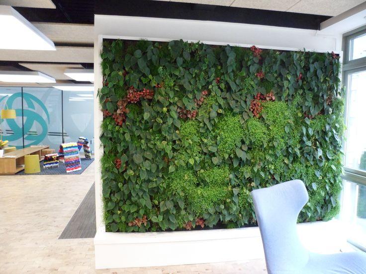 Superior Green Wall   Living_Green_Wall_Bristol Design