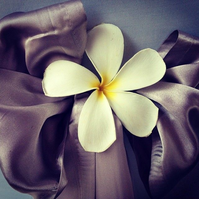 We love this cute idea of placing a fresh frangipani in the bow of your chair sash! #islandwedding #tropical wedding #destinationwedding