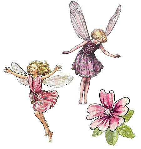 Flower Fairies Wall Stickers I M Very Tempted Fairy