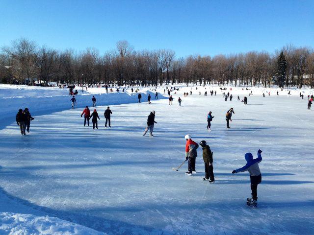 L'hiver au lac des Castors, on observe les patineurs. - Le pamplemousse picoté