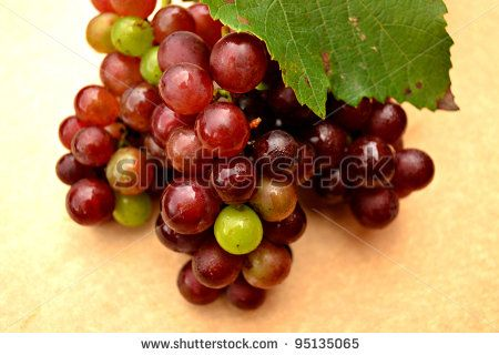 Bunch of Grapes by ByBethy, via ShutterStock