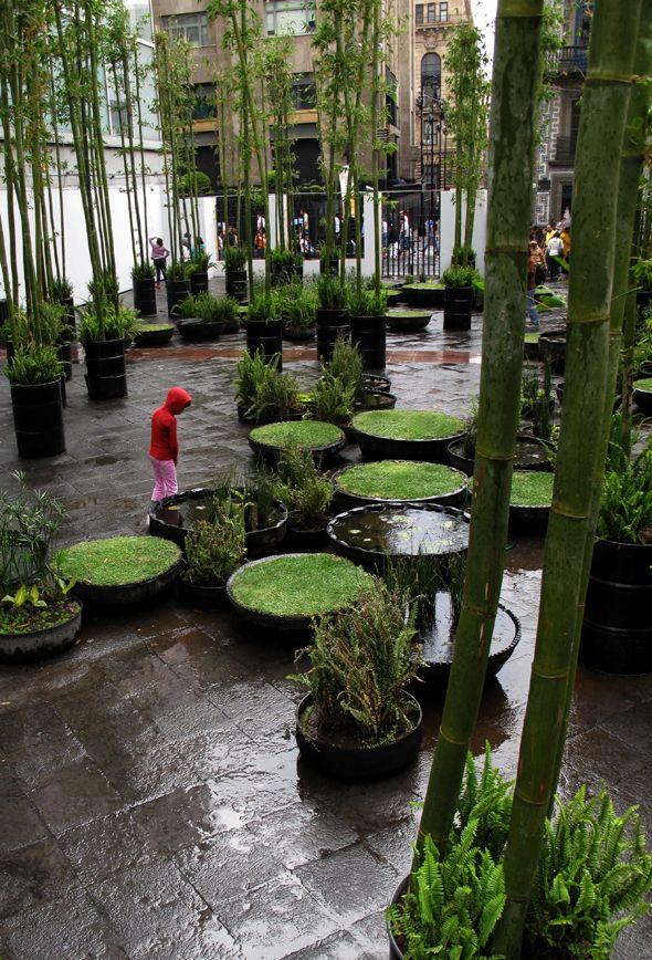 the rented spade: Tyre gardens