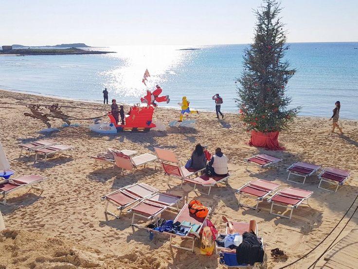 Salento, in spiaggia spunta l'albero di Natale