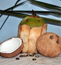 Restore Skin Elasticity Naturally With Coconut Oil