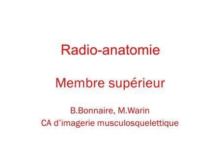 Radio-anatomie Membre supérieur B.Bonnaire, M.Warin CA dimagerie musculosquelettique.