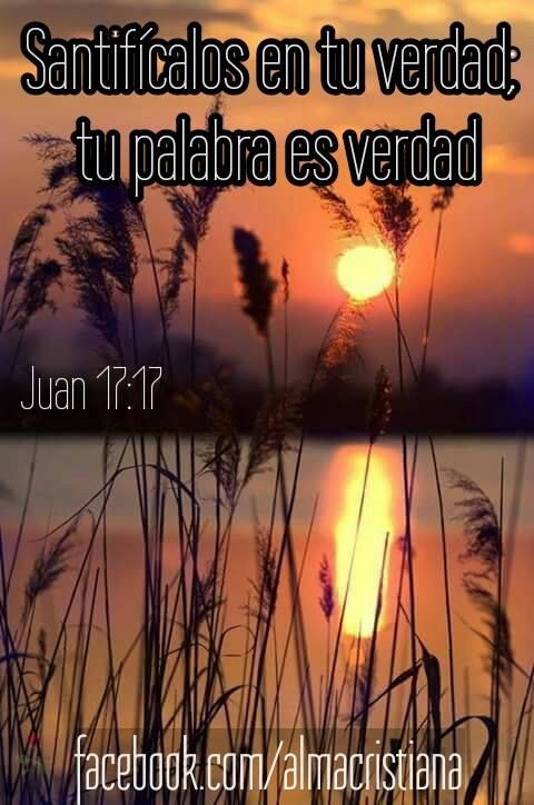Dios, creo en tu  evangelio, sé que es verdad porque me hace libre, ayúdame a permanecer en tu palabra que es la verdad, santificame en ella, en Cristo te lo pido, amén.