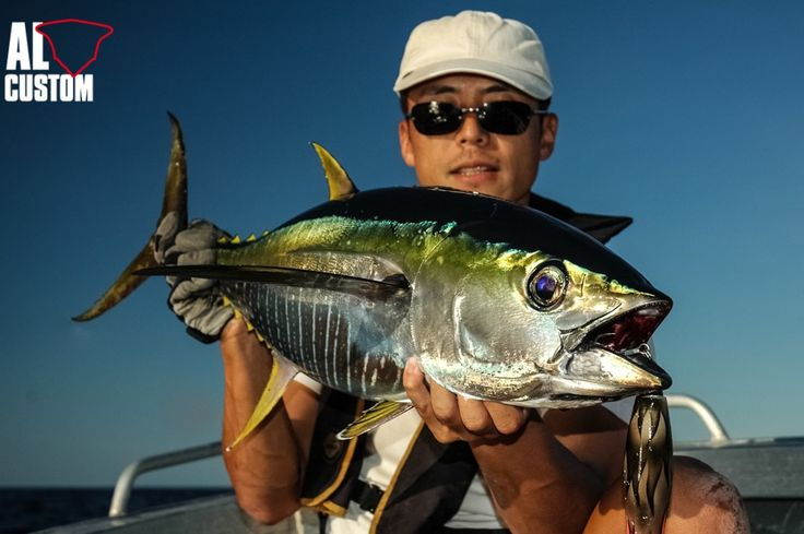 FISHING - tonno pinna gialla